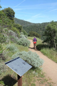 Jogger on West Side Trail near Tuolumne City