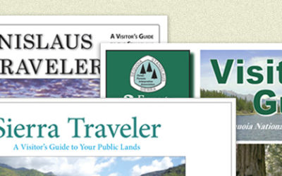 Our Free Forest Visitor Guides